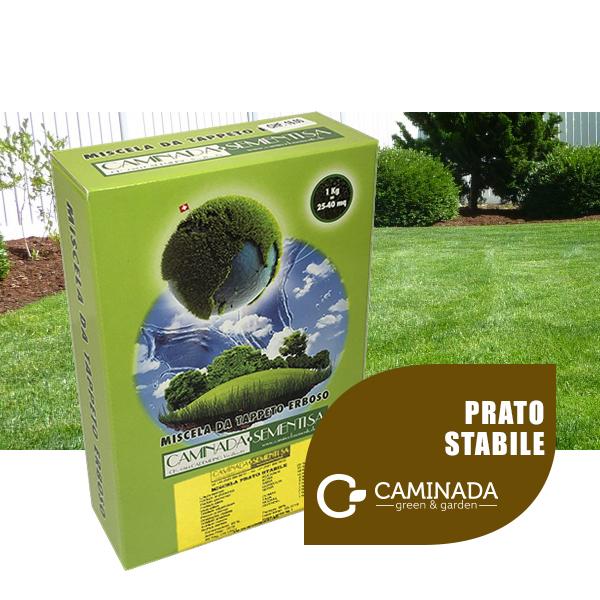 Miscela-PRATO-STABILE-linea-CAMINADA-1Kg