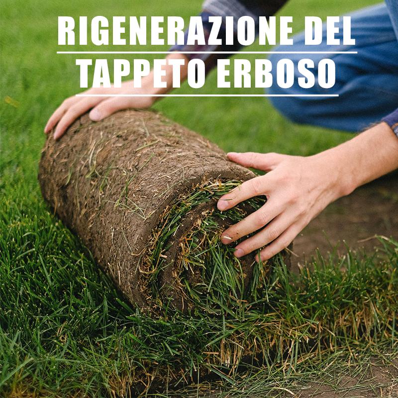 Rigenerazione del tappeto erboso