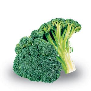 Cavolo broccolo